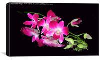 Fallen Orchid, Canvas Print