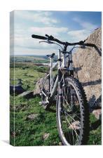 Mountain biking, Canvas Print