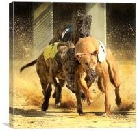 May the best dog win, Canvas Print