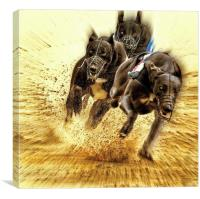 Who let the dogs out ?, Canvas Print
