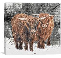 Friends of old, Canvas Print