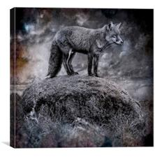 In the light of the silvery moon, Canvas Print