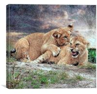 Get off my back., Canvas Print