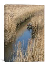 Boat in reeds, Canvas Print