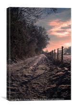 A winter Walk, Canvas Print