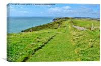 Caldey Island Coast Path, Canvas Print