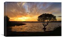 Sunset at Kenfig Pool, Canvas Print