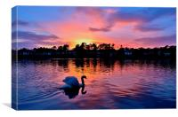 Sunset over Roath Park Lake, Canvas Print