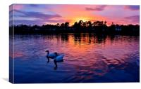 Roath Park at Sunset, Canvas Print