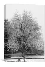 Winter Ice Storm, Canvas Print
