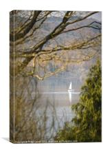 Reflection of Peace and Tranquillity., Canvas Print