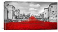 'The Wave'  Poppies at the Tower of London. , Canvas Print