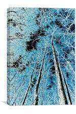 Forest art, Canvas Print