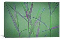 Water Reed Digital art, Canvas Print