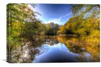 The Mirror Pond, Canvas Print