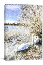 Snow Swans Art, Canvas Print