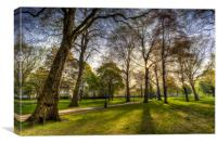 Green Park London, Canvas Print