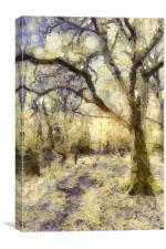 Sunrise Forest Art, Canvas Print