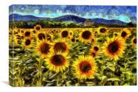 Sunflower Field Van Gogh, Canvas Print