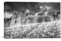 York City Walls Infrared , Canvas Print