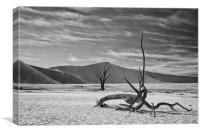 Dead Tree Desert Namibia, Canvas Print