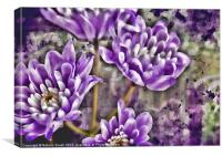 Textured Lilac, Canvas Print