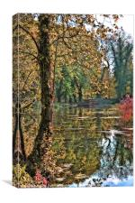 Gunpowder Pond, Canvas Print