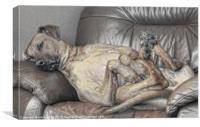 THE SLEEPING RIDGEBACK, Canvas Print