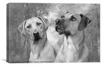 LION DOGS, Canvas Print