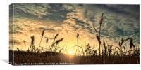 A CLOUDY SUNSET, Canvas Print
