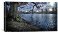 MOTE PARK LAKE, Canvas Print