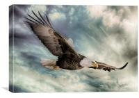 The Flight of an Eagle, Canvas Print