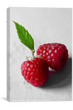 one leaf Rasberrys, Canvas Print