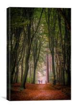 Speulderbos 2, Canvas Print