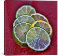 citrus, Canvas Print