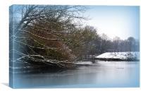 icy lake, Canvas Print