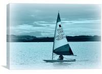 the lake, Canvas Print