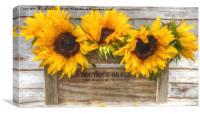 sunflowers van gogh style, Canvas Print