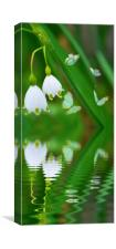 snowdrops and butterflies, Canvas Print