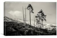 Glen Shiel, Highlands, Scotland, Canvas Print