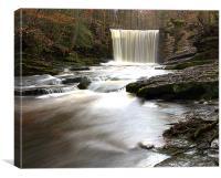 Woodland Waterfall, Canvas Print