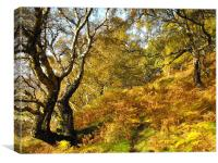 Glorious Autumn, Canvas Print