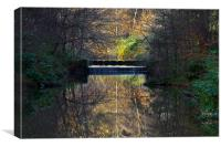Woodland Water Reflection, Canvas Print