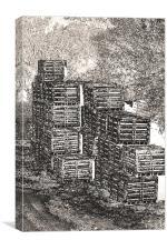 Fishing Net Crates, Canvas Print