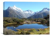 En-Route to Milford Sound National Park, Canvas Print