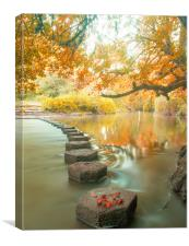 Box Hill Stepping Stones, Canvas Print
