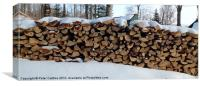 Stack of Firewood, Canvas Print