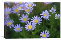 The purple plant, Canvas Print