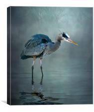 Blue Bayou, Canvas Print