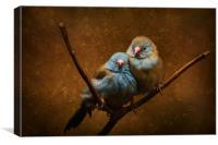Love Birds, Canvas Print